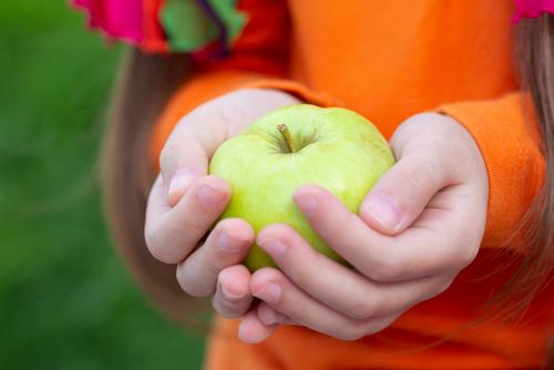 Index glycémique : une alternative à tenter chez les enfants obèses