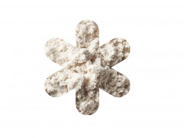Quelle quantité et quelle source de protéines faut-il privilégier pour une prévention de la sarcopénie ?